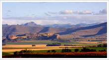 Camelroc Eastern Free State Highlands Guest Farm Accommodation - Offering Bed and Breakfast and Self Catering Accommodations situated near Caledonspoort border post to Lesotho